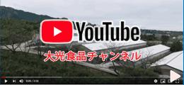 YouTube‐大光食品チャンネル